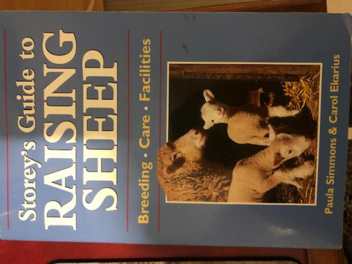Storeys Guide to Raising Sheep Book - Perfect Condition